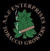 ASP Enterprises Inc